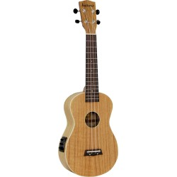 Ashbury Concert Ukulele Flame oak top, back & sides