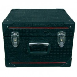 New Boorinwood Concertina 30 button case