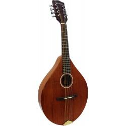 Ashbury A Style Mandolin, Solid Sapele
