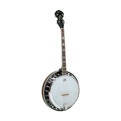 New Boorinwood TB-45 Irish Tenor Banjo