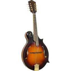 Ashbury F Style Bluegrass Mandolin