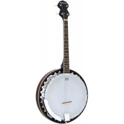Ashbury Short Scale 17 Fret Irish Tenor Banjo