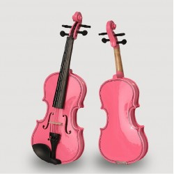 Violin Beginner 5 Lesson...