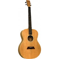 Ashbury Tenor Guitar, Flamed Oak GDAE Flame oak top, back and sides. Satin finish
