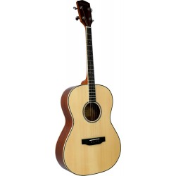 Ashbury Tenor Guitar, Solid...