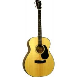 Blueridge Acoustic Tenor...