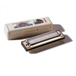Hohner Big River 10 hole G Harmonica 590/20 in Case